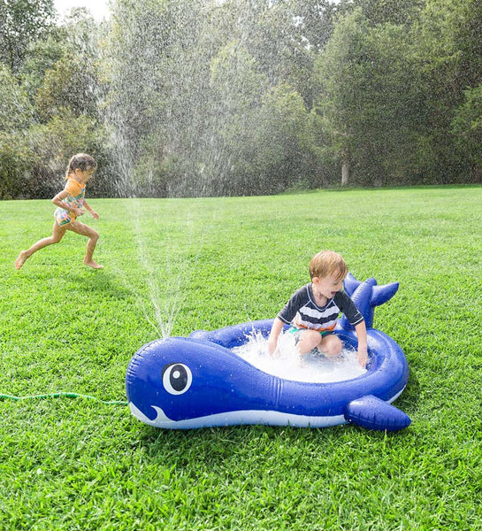 Whale Sprinkler Pool