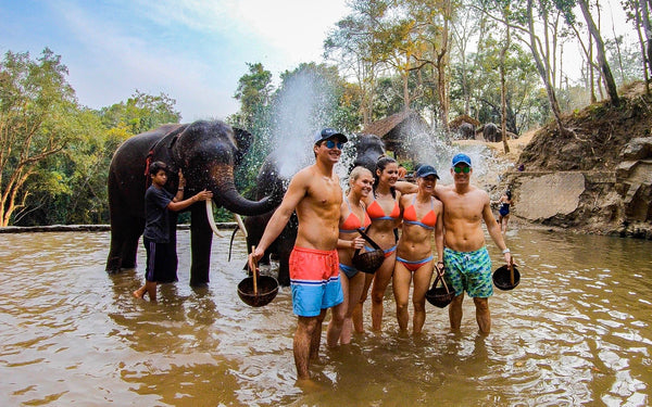 people in thailand with elephant