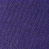 Gameday Skipjack Ribbon Belt - Regal Purple Color Swatch Image