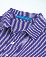 Gameday Stripe Polo - Clemson University | Southern Tide