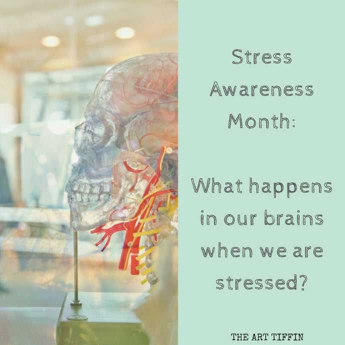 What happens in our brains when we are stressed?