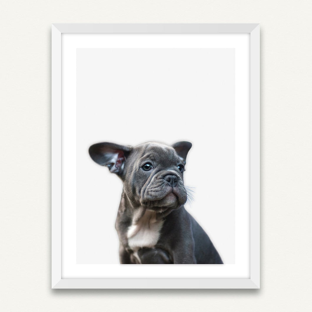 Little Puppy - Minimalist Framed Wall Art