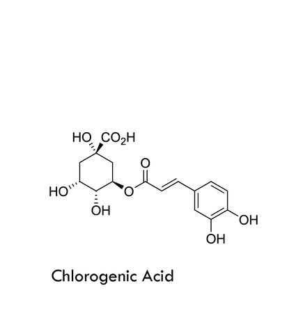 Chlorogenic Acid chemical structure
