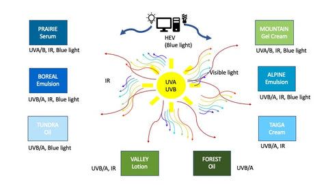 DU NORD SKIN CARE products with possible solar protection