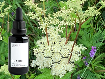 PRAIRIE Serum science c.2020 DU NORD SKIN CARE