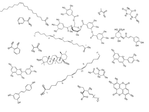 Some of the key molecules found in DU NORD SKIN CARE