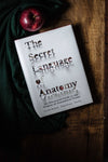 The Secret Language of Anatomy - Anatomy Boutique