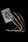 Antique human teaching bone - Hand-Anatomy Boutique-Anatomy Boutique