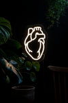 Anatomical LED Neon Warm White Heart-Anatomy Boutique-Anatomy Boutique