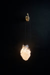 AB X DASH OF CURIOSITY - Glow Pendant Heart Light-Anatomy Boutique-Anatomy Boutique
