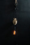 AB X DASH OF CURIOSITY - Heart Pendant light fixture - Gold-Anatomy Boutique-Anatomy Boutique