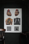 Vintage Anatomical Chart - Dresden: The Heart-Anatomy Boutique-Anatomy Boutique
