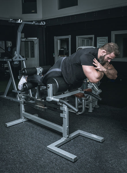 York Barbell 55053 STS Glute Hamstring Machine in Iron Gym Lisburn