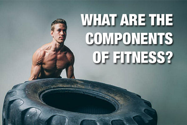 What are the Components of Fitness?