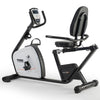 York Fitness Perform 215 Recumbent Bike