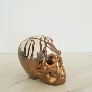 Closed Human Skull - Curio Cavern