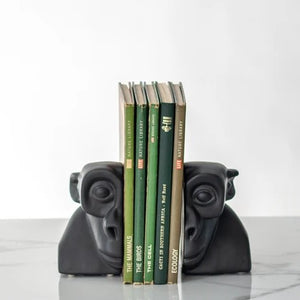 Evolution Man Bookend - Curio Cavern