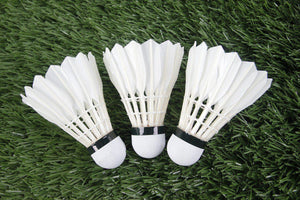 Badminton Systems