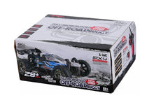 1/12 Xinlehong Toys RC OFF-ROAD BUGGY