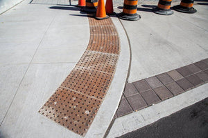 Detectable Warning Cast Iron Cast in Place Truncated Dome - Detectable Warning Panels