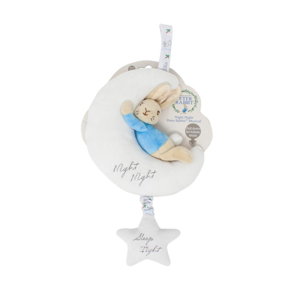Bambinista-RAINBOW DESIGNS-Toys-PETER RABBIT Night Night Musical