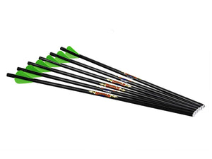 "Diablo 18"" Carbon Arrows (6pk)"