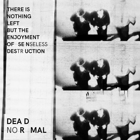 DEAD NORMAL - There Is Nothing Left But The Enjoyment Of Senseless Destruction