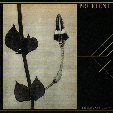 fusetron PRURIENT, Black Post Society