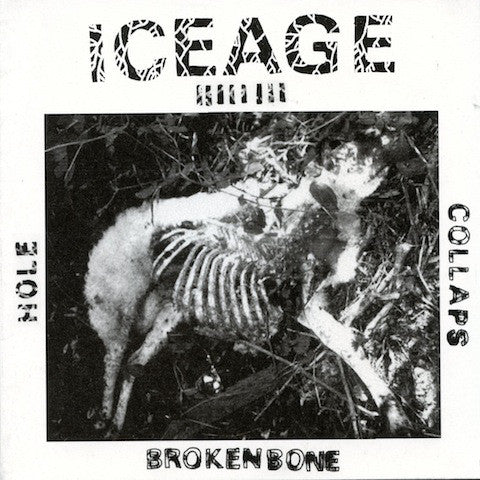 ICEAGE - S/T