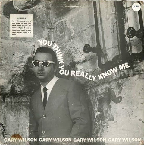 fustron WILSON, GARY, You Think You Really Know Me