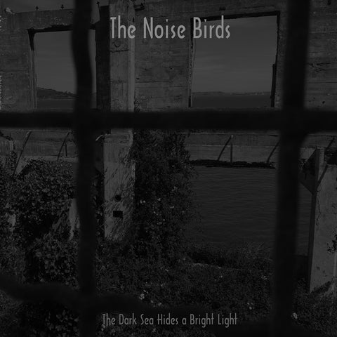 NOISE BIRDS, THE - The Dark Sea Hides a Bright Light