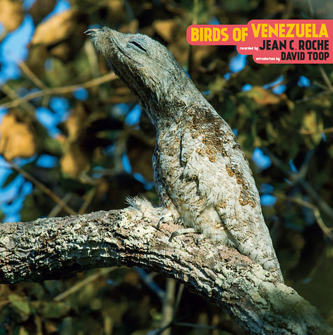 ROCHE, JEAN C. - Birds Of Venezuela