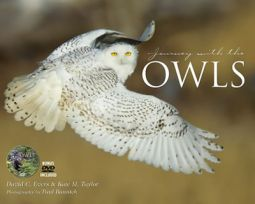 Journey with the Owls by David Evers, Ph.D.  and Kate Taylor
