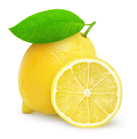 Lemon Dry Flavoring Syrup Mix