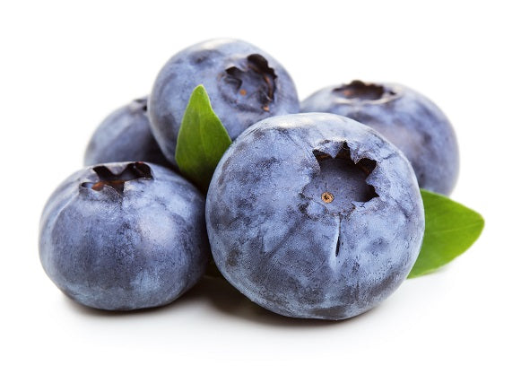 Blueberry Dry Flavoring Syrup Mix