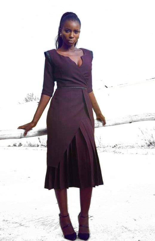 The Fowler Pleat Dress
