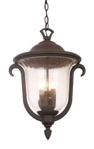 Santa Barbara Outdoor 3 Light Medium Hanging Lantern