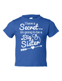 I Have Secret Going Be Big Sister Funny Toddler Tee Royal 2T