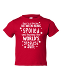 Theres Thin Line Spoiled Aunt Funny Toddler Tee Red 2T