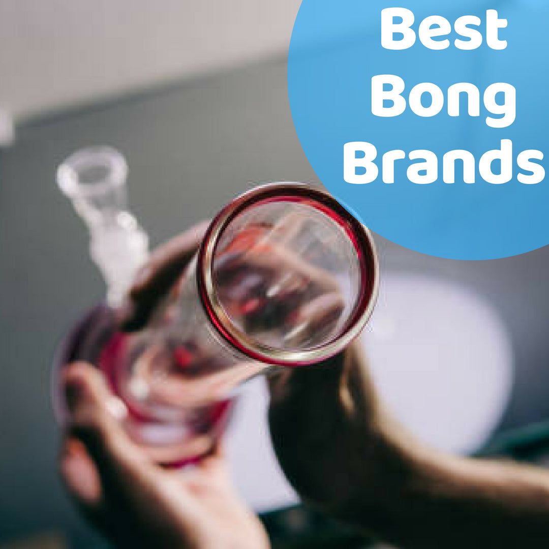Best Bongs 2019 Best Bong Brands of 2019   This Year's Best Glass Companies