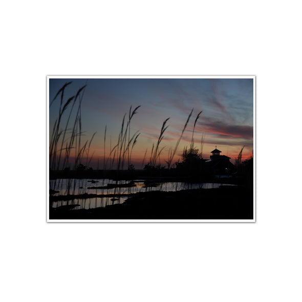 """Stone Harbor Wetlands"", Unframed Print"