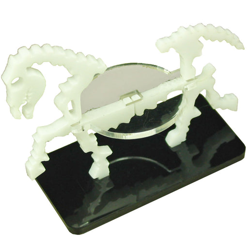 Skeletal Steed Character Mount with 25x50mm Base, White - LITKO Game Accessories
