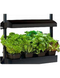 Micro Grow Light Garden, Black
