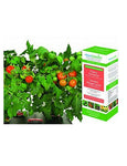 AeroGarden 7-Pod Cherry Tomato Seed Kit