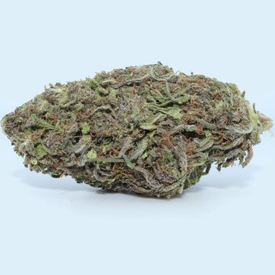 Pineberry (f.k.a. Saskatoon) CBD Hemp Flower – 3.5 Gram Mylar Bag