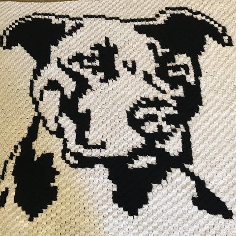 Crochet throw pittie blanket