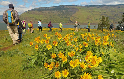Friends of the Columbia Gorge Web Interview