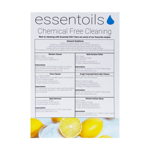 Wholesale Cleaning Guide - English & Romanian Available (Case 30)