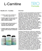 L-Carnitine Stimulates Fat Utilization, Boosts Metabolism, Improves Cellular Energy, Promotes Cardiovascular Health & Supports Post-Training Muscle Recovery 60 Caps