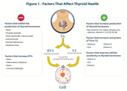 Advanced Thyroid Support  Helps Maintain Healthy Thyroid Function, Improves Cellular Sensitivity to Thyroid Hormones, Promotes the Synthesis of Thyroid Hormones & Helps Support Conversion of T4 to T3